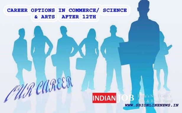 Check Best Career Options After 12th