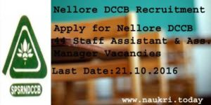 Nellore DCCB Recruitment 2016–For 44 Staff Assistant | Assistant Manager Posts