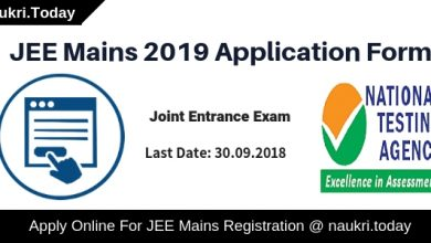 JEE Mains 2019 Application Form (1)