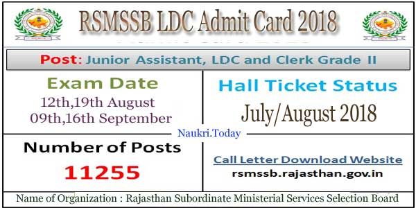 RSMSSB LDC Admit Card 2019 for Phase 2 | Check LDC Typing